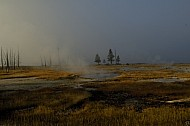 Yellowstone NB